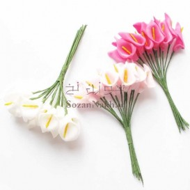 گل شیپوری فومی