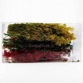 گل خشک رنگ شده مخصوص رزین _ کد 3 (سبزه ریزه)