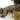موی عروسک 5 سانتی حالت دار (موی پسر)