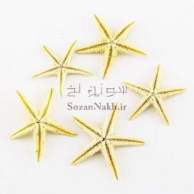ستاره دریایی طبیعی مینیاتوری