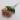 دسته گل صد تومانی _ کد 5