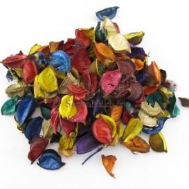 گل خشک رنگارنگ
