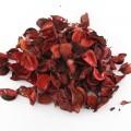 گل خشک قرمز