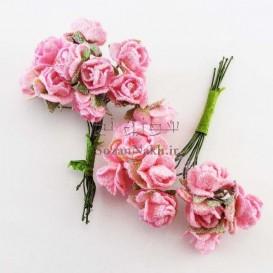 گل اکلیلی کاغذی